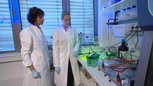 11.09.2014 DW Projekt Zukunft Biologin
