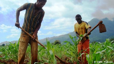 Two men working in a field in Tanzania