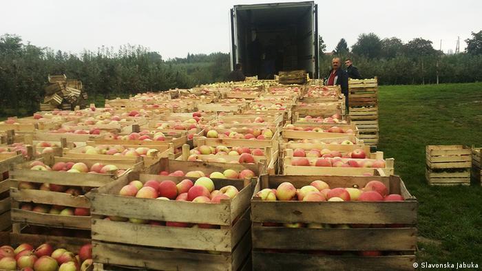Agrarindustrie in Kroatien