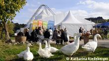 Festspielzelt der Schostakowitsch Tage in Gohrisch Sachsen Deutschland