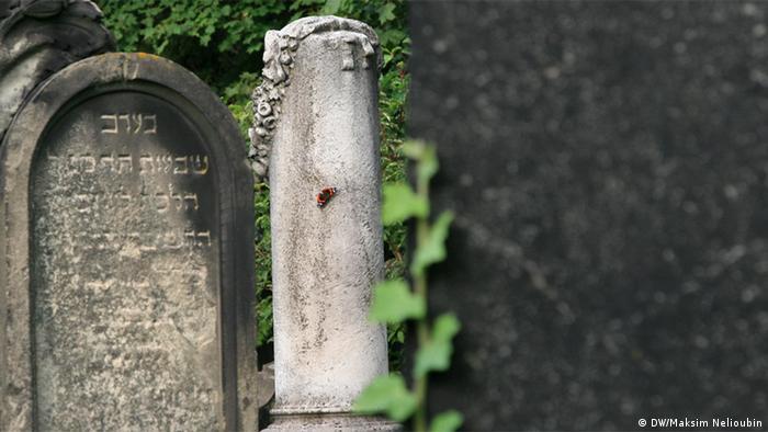 Надгробия в более новой части еврейского кладбища Вормса