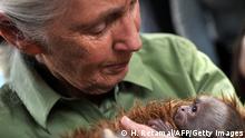 Chile Großbritannien Affenforscherin Jane Goodall mit Affe