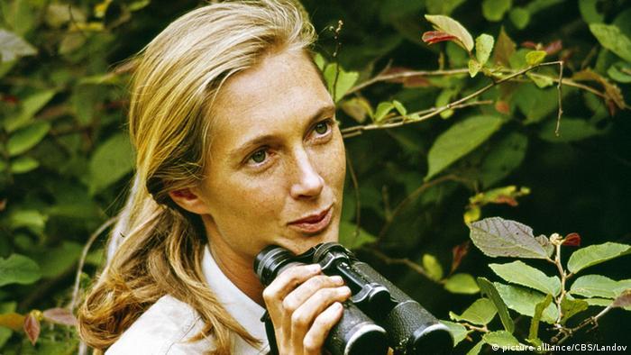Jane Goodall with binoculars in 1965