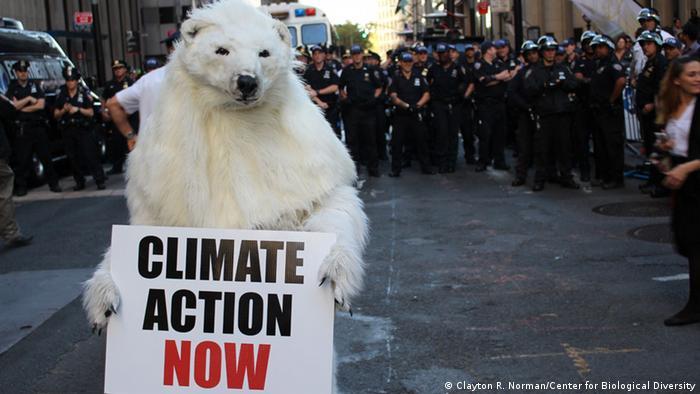 """Un """"oso polar"""" en la manifestación de Nueva York bajo el lema """"Inunda Wall Street""""."""