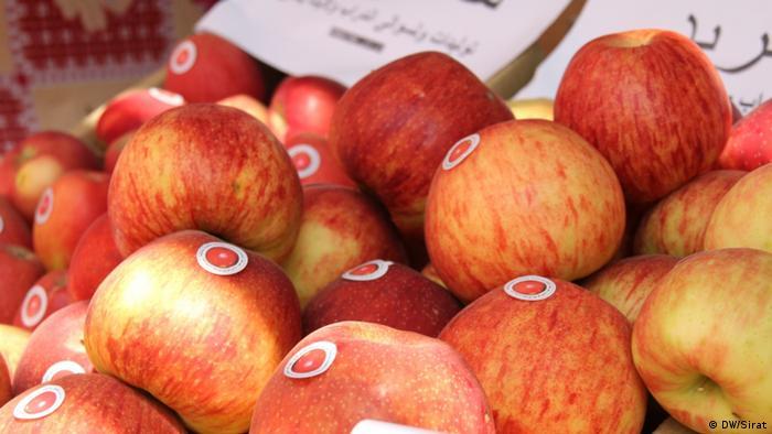 Ausstellung Herbst und Früchte in Kabul Afghanistan 2014