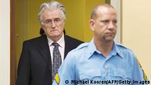 Niederlande Kriegsverbrechertribunal Radovan Karadzic