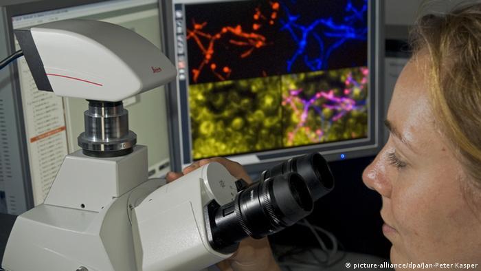 Fluoreszence mikroscope Photo: Jan-Peter Kasper dpa/lth