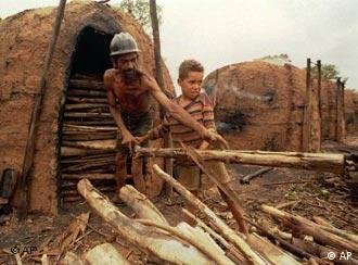 Jose dos Anjos Ferreira y su hijo Leandro, de nueve años, trabajando en Brasil.