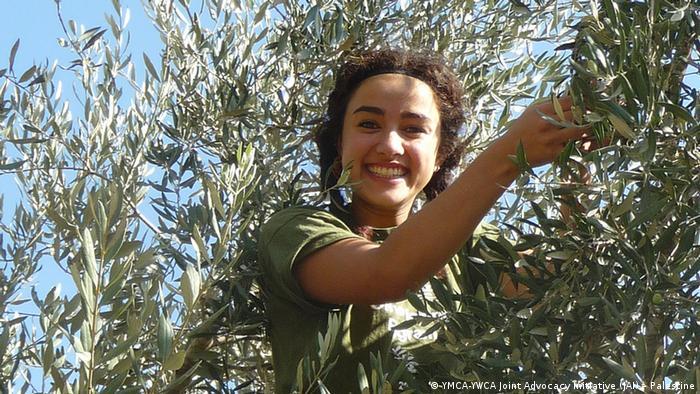 Palästina Olivenernte
