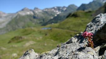 Pyrenäen-Landschaft in Frankreich