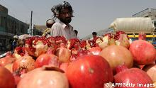 Granatapfel in Afghanistan (AFP/Getty Images)