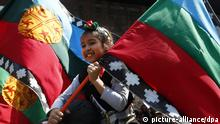 epa03907813 A girl holds a Mapuche flag during a march in downtown of Santiago de Chile, Chile, 12 October 2013, called by native organizations as part of the commemoration of the Hispanic Day (Día de la Raza). The organizations called to the Chilean State to respect the rights of the native people. EPA/FELIPE TRUEBA
