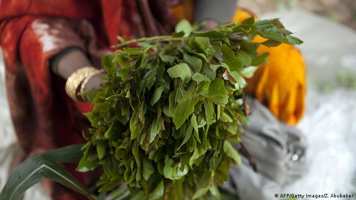 A woman holding a bundle of khat leaves