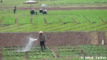 Landwirt in der Nähe der laotischen Hauptstadt Vientiane