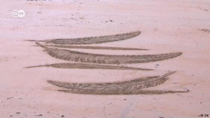 feathers drawn into sand (DW)
