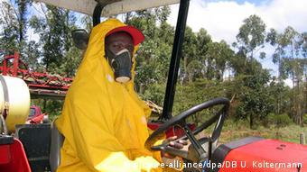 Schnittblumen aus Kenia zu Hungerlöhnen geerntet