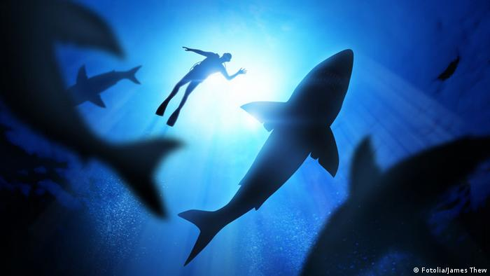 A diver at the top of the ocean, swimming with sharks below