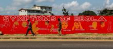 Pictureteaser Ebola Special