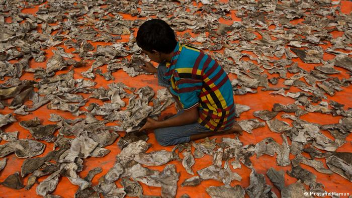 A child sits on the floor surrounded by fish skins