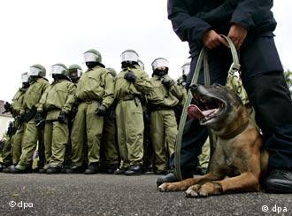 Polizisten und ein Polizeihund bei einer Übung (Archivbild), Quelle: AP