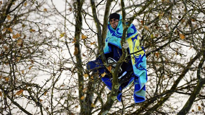 Refugee sitting in a tree Photo: Andreas Gebert/dpa