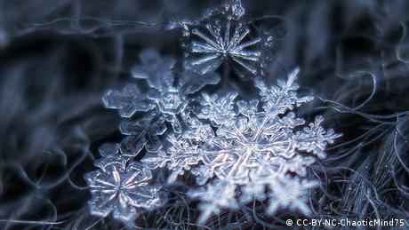 Bildergalerie Schneeflocken