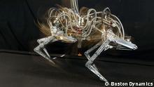 HANDOUT - Undatiertes Aufnahme der US-Firma Boston Dynamics zeigt die Laufstudie von «Cheetah», einem Roboter-Gepard des US-Militärs, der den Geschwindigkeitsrekord für Laufroboter gebrochen hat. Cheetah ist der schnellste Laufroboter. Er ahmt die Bewegungen eines Geparden nach. Foto: Cheetah robot image courtesy of Boston Dynamics - Verwendung nur für redaktionelle Zwecke bei Urhebernennung im *** Zusammenhang mit der Berichterstattung über den Rekord) ***