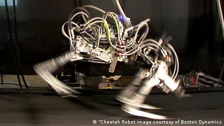 USA Roboter Boston Dynamics Roboter-Gepard - Google kauft Boston Dynamics