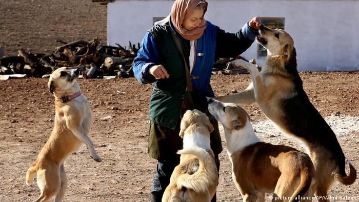 واریزیارانه اسفند۹۵شامل عیدی هم میشود سگ در اسلام