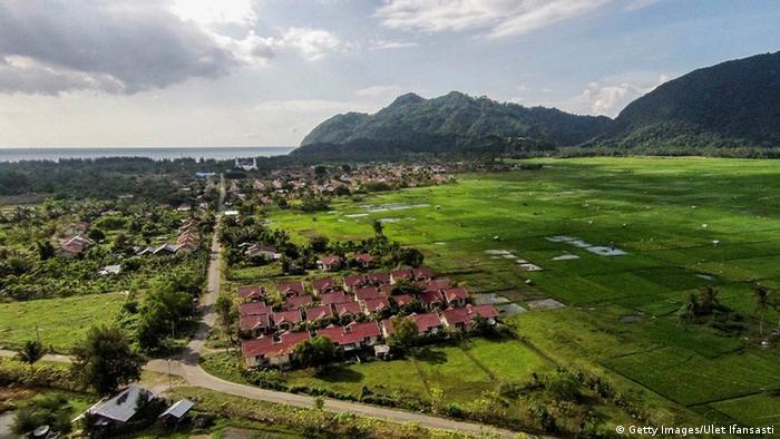 Green landscape in Indonesia