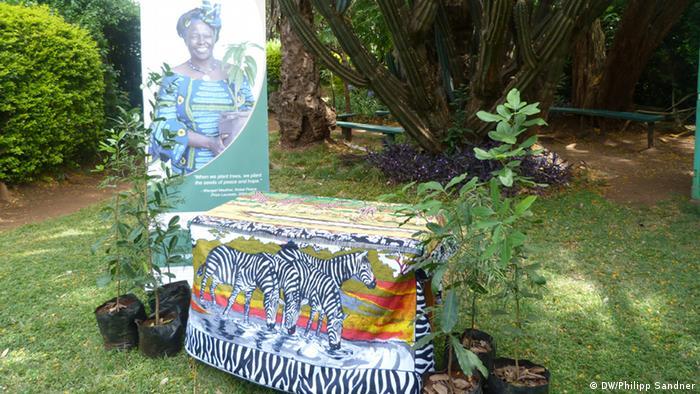 Ein Bild auf dem Grundstück des Green Belt Movement in Nariobi