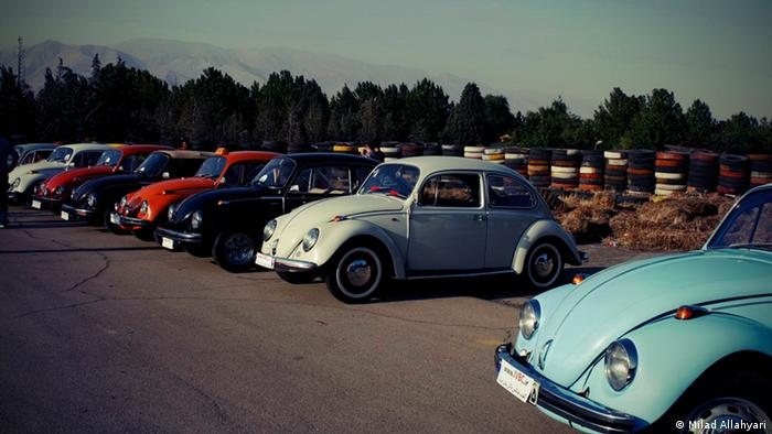 A row of Beetles sits in a parking lot (UGC) (Milad Allahyari)