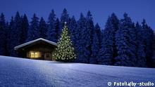 #69631397 - Skiihütte mit Weihnachtsbaum © by-studio