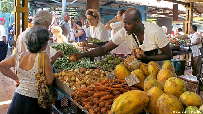 Kuba Markt Marktplatz Einkaufen Konsum Lebensmittel (picture-alliance/dpa)