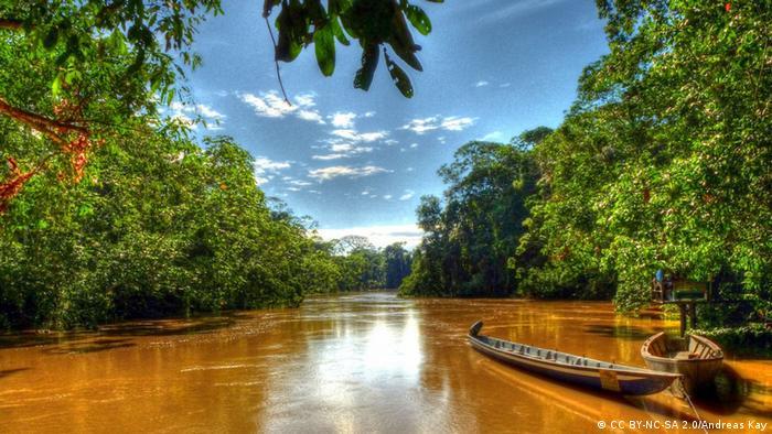 Yasuni-Nationalpark im ecuadorianischen Amazonasdschungel