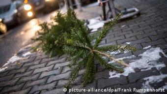Christmas tree on the sidewalk