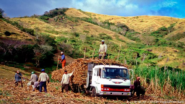 Workers harvesting sugarcane (Photo: CC BY-NC-ND 2.0/Asian Development Bank)