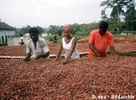 Agricultural workers in Africa
