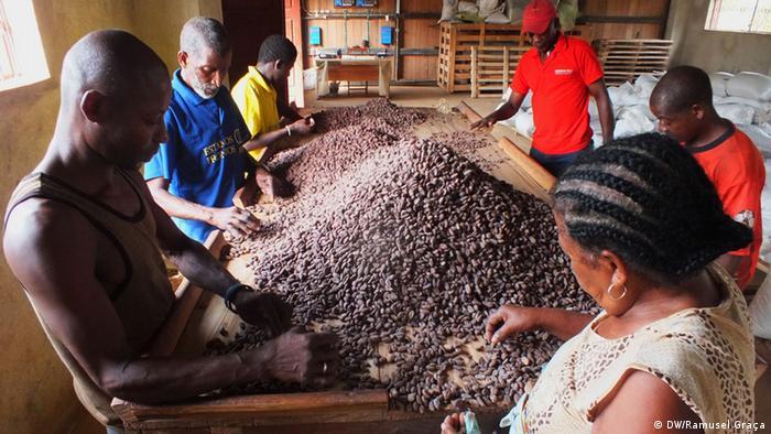 São Tomé Fair Trade Kakao (DW/Ramusel Graça)
