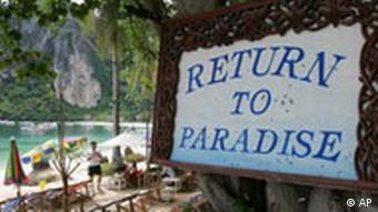 Rows of beach chairs line a strip of beach on Phi Phi Island, Thailand