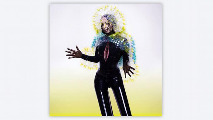 Album cover Björk Vulnicura