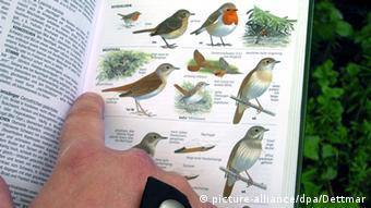 Ein Vogelkundler bestimmt in Münster nach einem Buch Vogelarten (Foto: dpa).