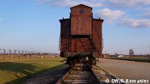 Railcar in Auschwitz-Birkenau camp (DW/R.Romaniec)