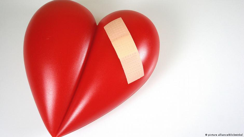 Das Herz: Motor des Lebens | Wissen & Umwelt | DW | 28.01.2015
