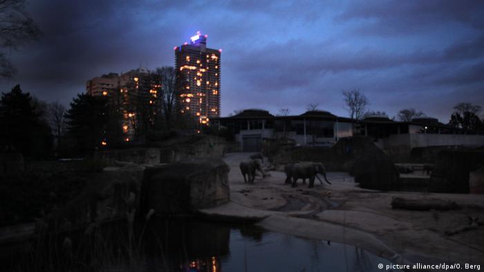 Парк слонов в Кельнском зоопарке