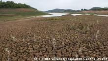 epa04476397 The Cantareira water reservoir, which is the water supply for nearly 6.5 million people in the metropolitan region of Sao Paulo, remains at very low levels, after three consecutive days of rain, at Braganca Paulista, Sao Paulo state, Brazil, 04 November 2014. The drought in the region is the worst in 80 years, according to reports, with the region only receiving a third of the usual rainfall during the wet season from December to February. EPA/Aaron Cadena Ovalle +++(c) dpa - Bildfunk+++
