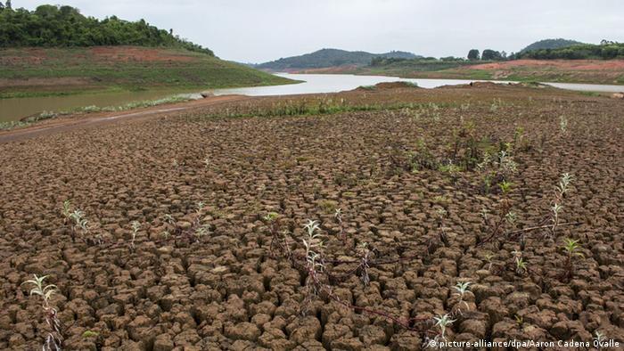Dürre in Brasilien (Foto: EPA/Aaron Cadena Ovalle)