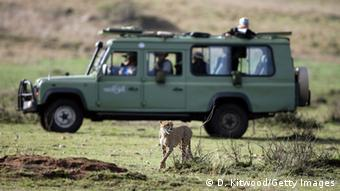 Fotosafari in Kenia