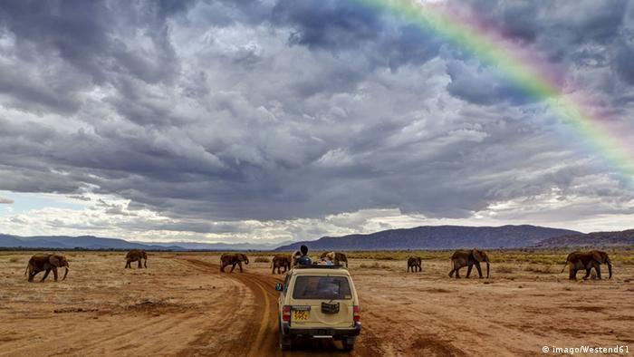 Tourists can go on safari on their smartphones