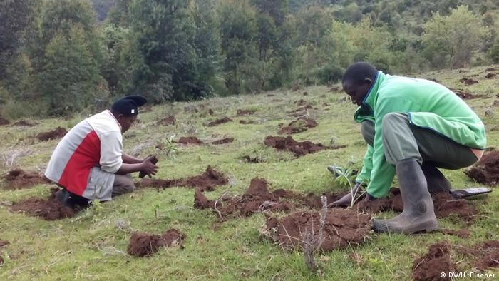Fotoreportage Aberdare Kenia 2014
